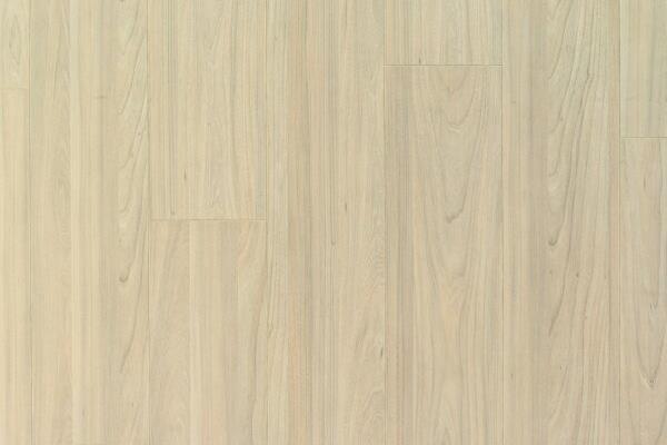 Ламинат Ideal, коллекция Raspberry, цвет Вяз Ванильный 5020